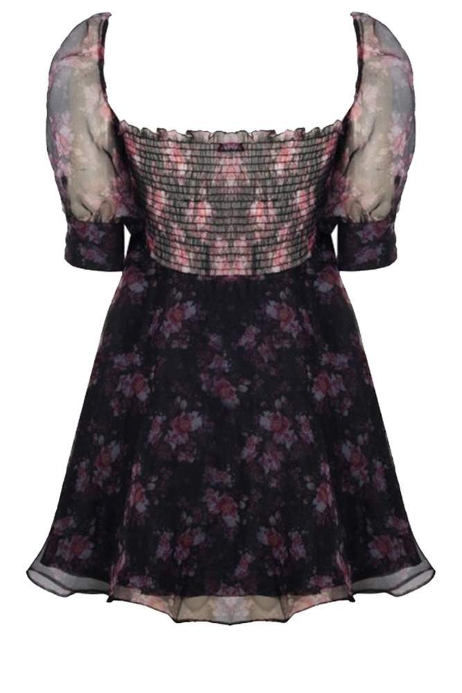 French Picnic Dress
